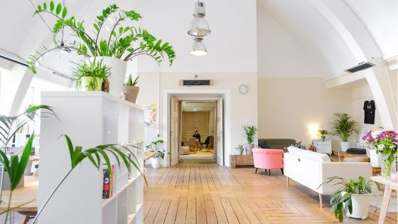 Do plants help with indoor air quality